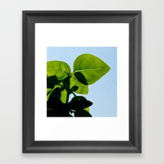 plant and sky 2 Framed Art Print