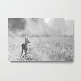 Baby Deer (Black and White) Metal Print