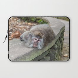Crab-eating Macaque V (Balinese Monkey) Laptop Sleeve
