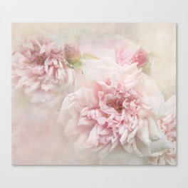 Softly Roses Canvas Print