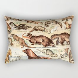 Cute Animals // Fourrures by Adolphe Millot XL 19th Century Science Textbook Diagram Artwork Rectangular Pillow