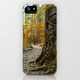 Bunya treasure iPhone Case