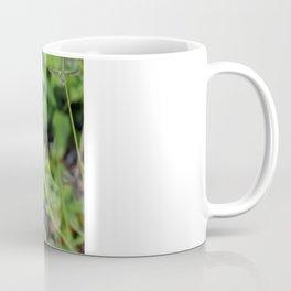 Butterfly. Coffee Mug