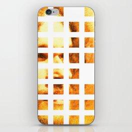 Brotherius V2 iPhone Skin