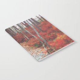 Autumn Wanderlust Notebook