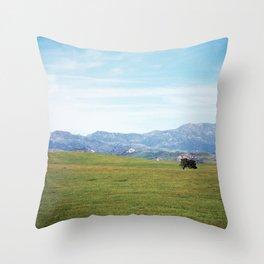 California Throw Pillow