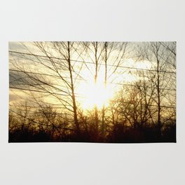 Silhouette of Trees  Rug