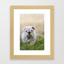 Walking Wrinkles Framed Art Print