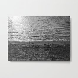 Discovery Park Metal Print