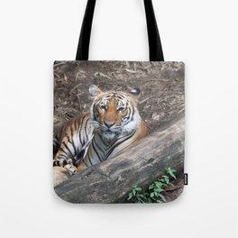 Tiger Relaxing Tote Bag