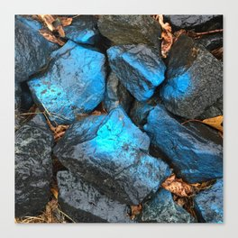 NVSV SPCS_blue rocks Canvas Print