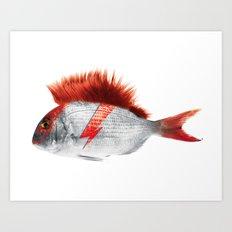 FISHY STARDUST Art Print