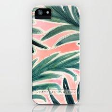 Lush Tropical Palm iPhone (5, 5s) Slim Case