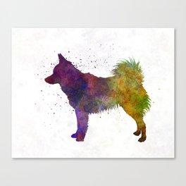 Schipperke in watercolor Canvas Print
