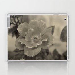 Classic Beauty Laptop & iPad Skin
