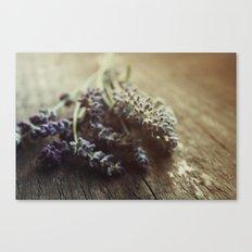 Lavender Morning Canvas Print