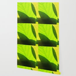 Avocado Leaves Wallpaper