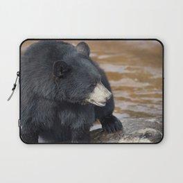 Black Bear (Ursus americans) near water Laptop Sleeve