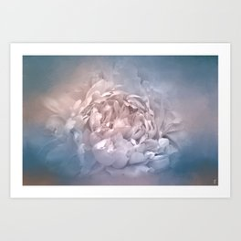 Blushing Blue and Cream Peony - Floral Art Print