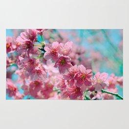 Plum Blossom 3 Rug