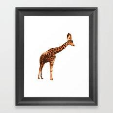 Giraffe Pope Framed Art Print
