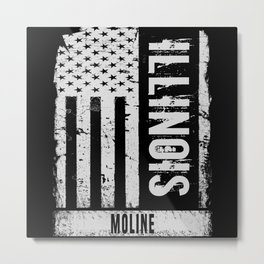 Moline Illinois Metal Print