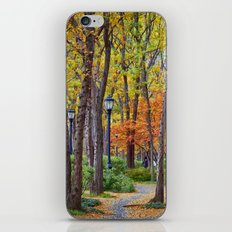 Walking into Autumn iPhone & iPod Skin