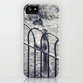 The Lonely Squirrel iPhone Case