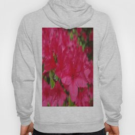 I'm Just a Flower Hoody
