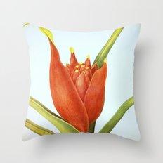 II. Vintage Flowers Botanical Print by Pierre-Joseph Redouté - Tropical Throw Pillow