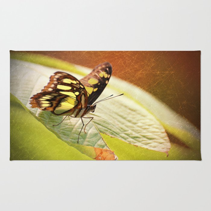 Butterfly - Ready for takeoff Rug