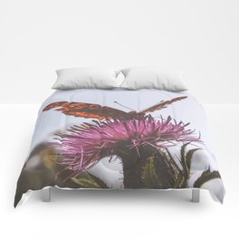 Aphrodite Fritillary Butterfly on Thistle Photography Comforters