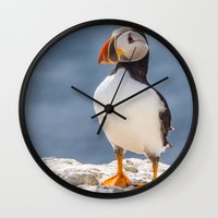 puffin Wall Clocks featuring Puffin by Moonlake Designs
