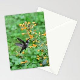 Hummingbird and orange agastache 51 Stationery Cards