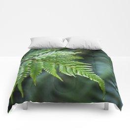 Fern Hollow Comforters