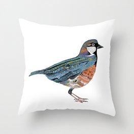 Typographic Sparrow Throw Pillow