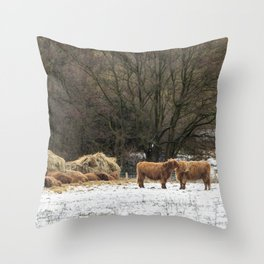 Scottish highland cows keeping warm in winter Throw Pillow