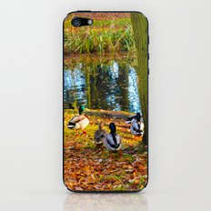 A Duck's Life iPhone & iPod Skin