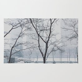 Winter View Rug