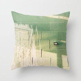 Socket Salton Sea Throw Pillow