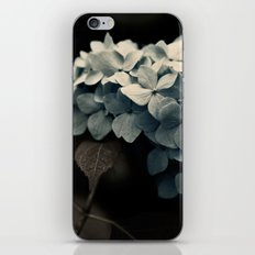 Dark Blue iPhone & iPod Skin