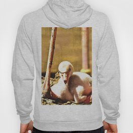 Impressive Animal - Flamingo Baby Hoody