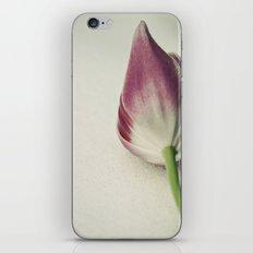 Snow Tulip iPhone & iPod Skin