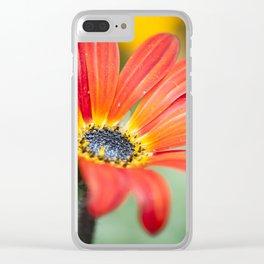 Orange gerbera Clear iPhone Case