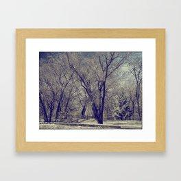 AD Park Framed Art Print