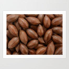 Pecan nuts Art Print