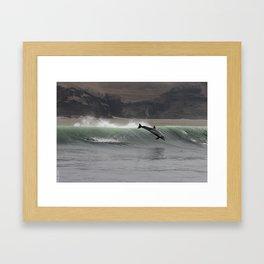 Dolphin Jump Framed Art Print
