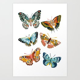 Woodland Butterfly Print Art Print
