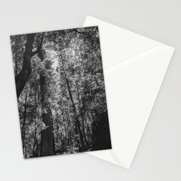 Beauty in the trees Stationery Cards