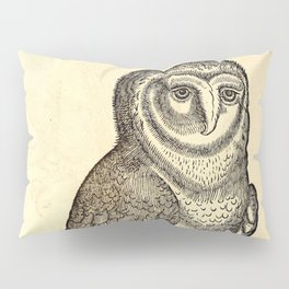 Antique Barn Owl Pillow Sham